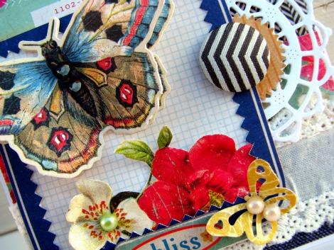 Butterfly closeup Final