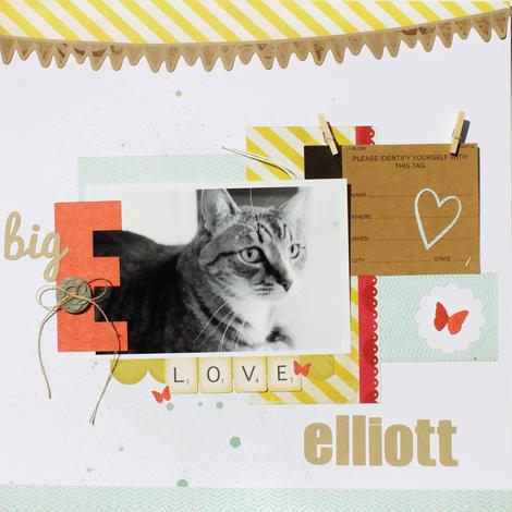 Elliott4 (1)