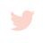 Blog_Social_TW