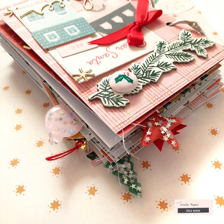 WM_Enza_DecemberMini_12